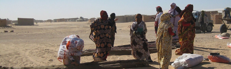 Sahara - Situación del país