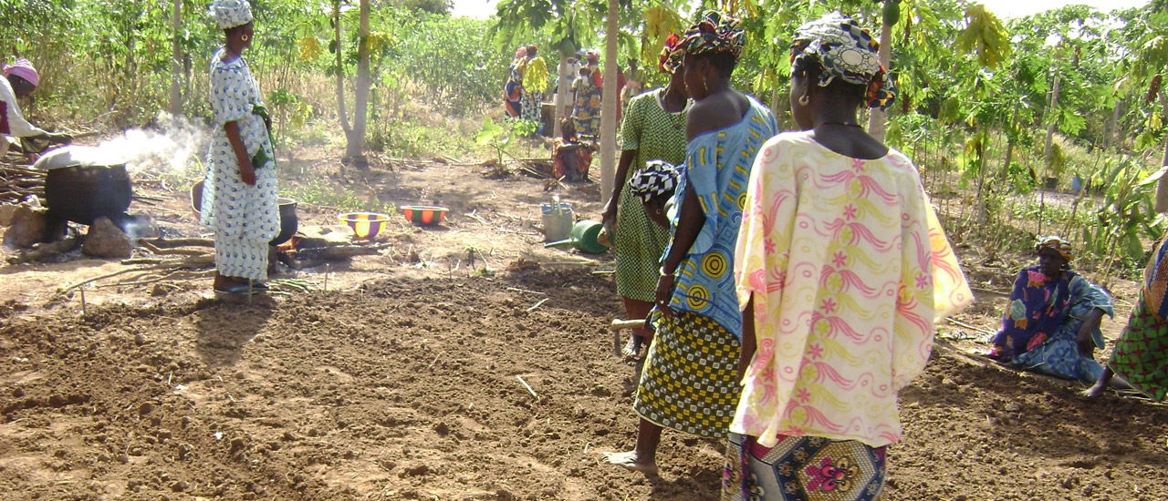 La erradicación del hambre debe ser la prioridad mundial de la próxima década