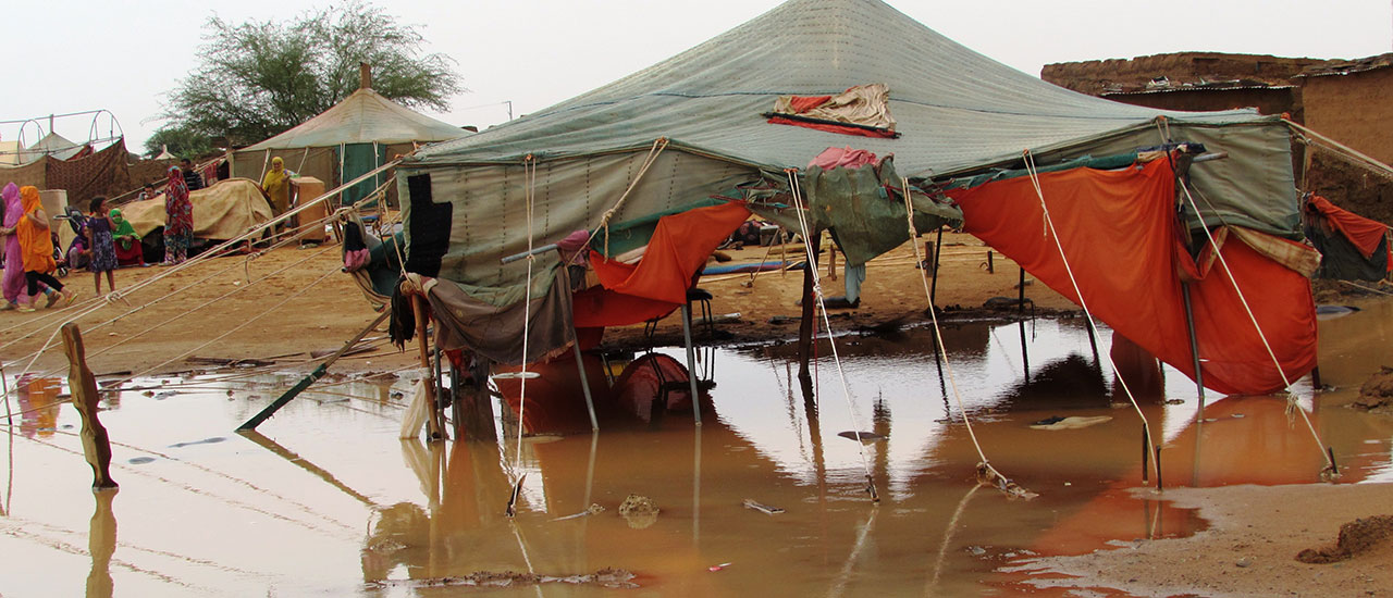 Lluvias torrenciales ponen los campamentos de refugiados/as saharauis en una situación de catástrofe natural sin precedentes