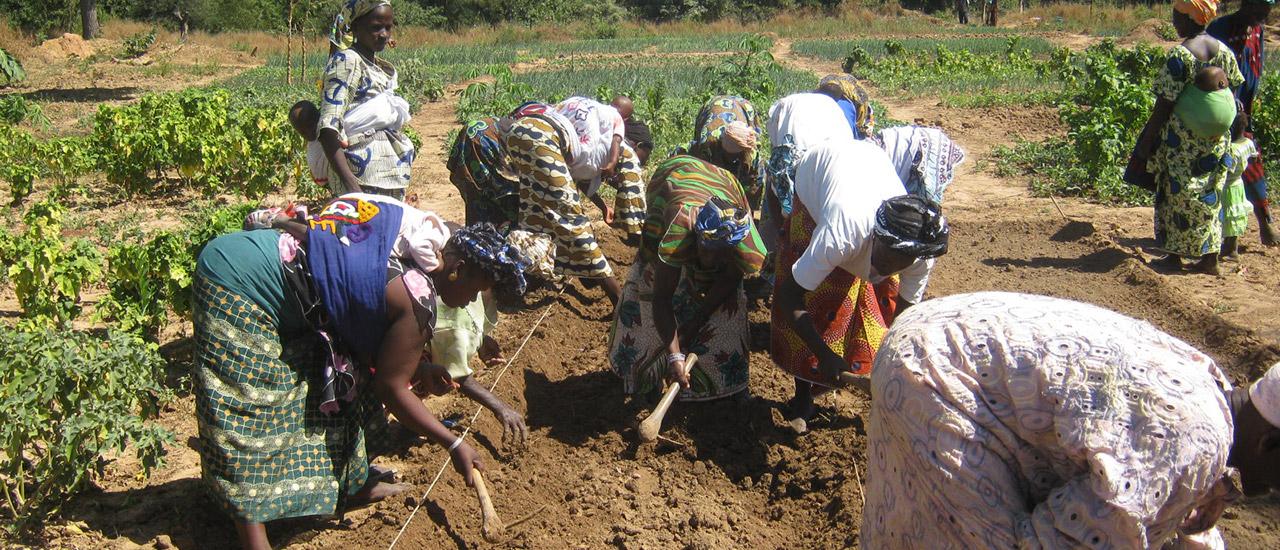Día Internacional de las Mujeres Rurales: entrevista a Missa Tounkara
