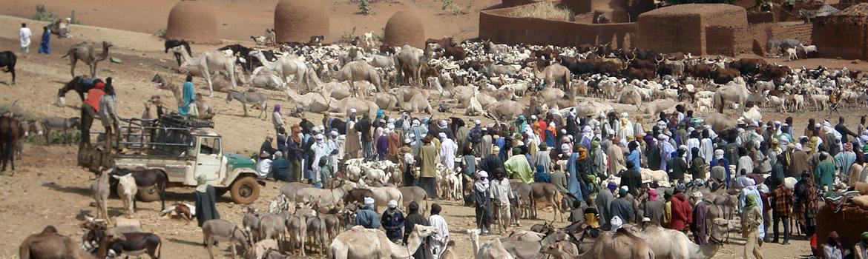 Situación del país - Níger